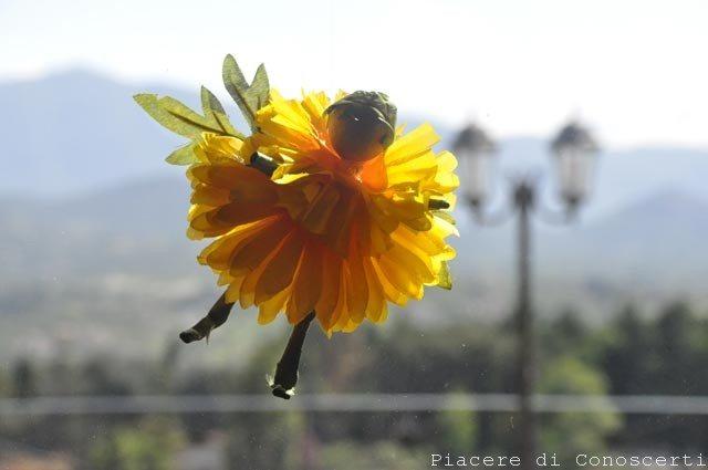 fatina dei fiori