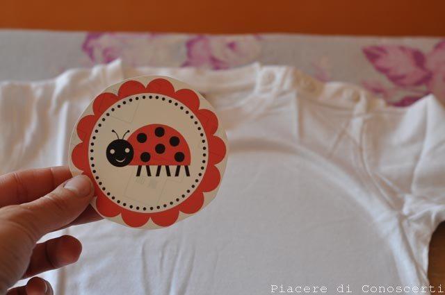 coccinella maglia