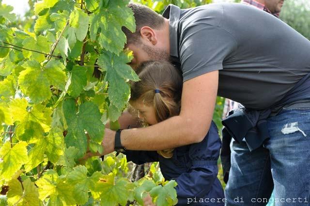raccolta uva bambini