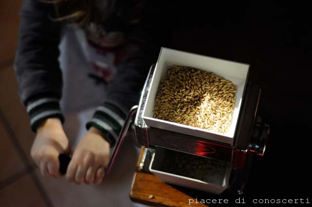 mulino casalingo autoproduzione farina