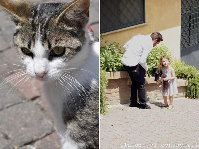 bambina e gattino