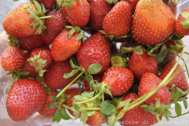 granita alle fragole fresche