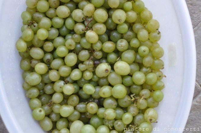 uva per vendemmia bambini