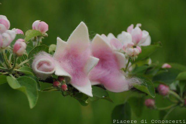 fiore in lana